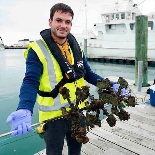 Cawthron-Ocean Health-Marine Biosecurity